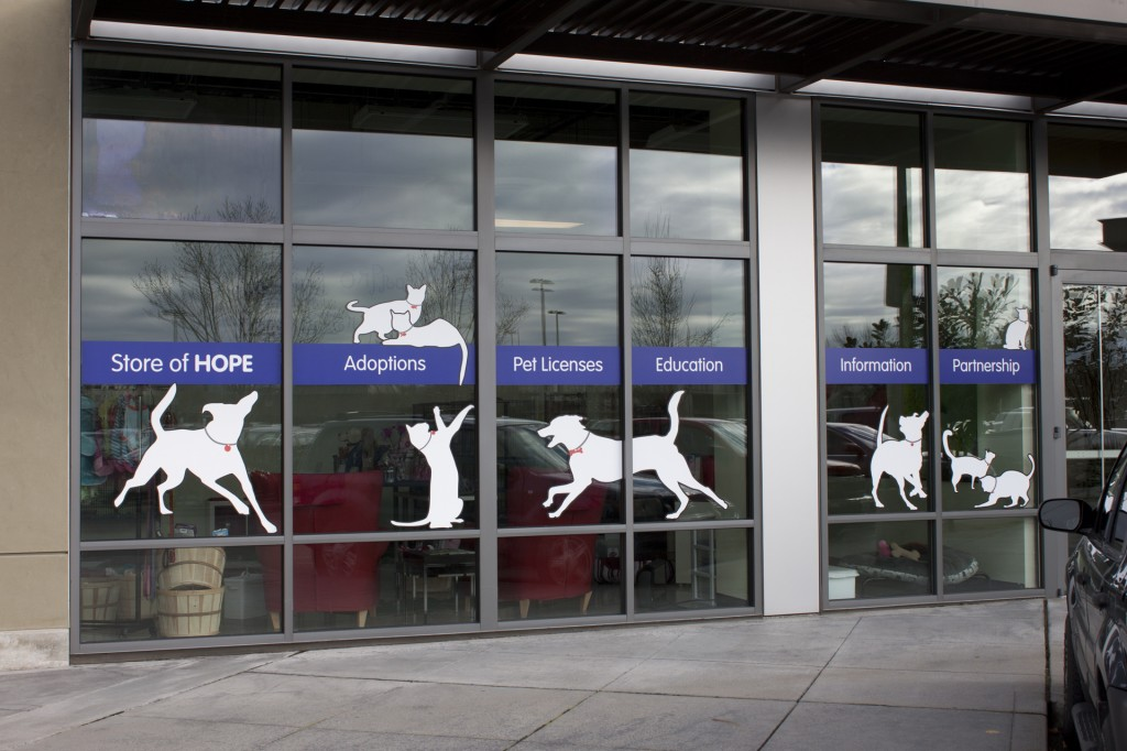 Window graphics and lettering squared off designs for Window vinyl design